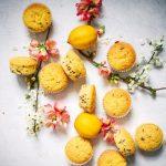 muffini od limuna